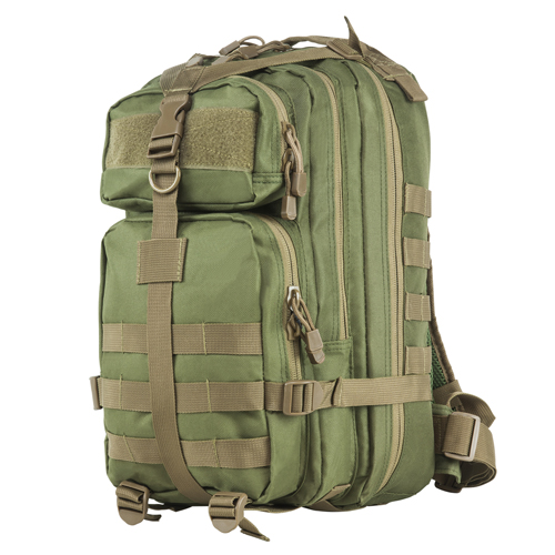 Vism Small Backpack/Green With Tan Trim
